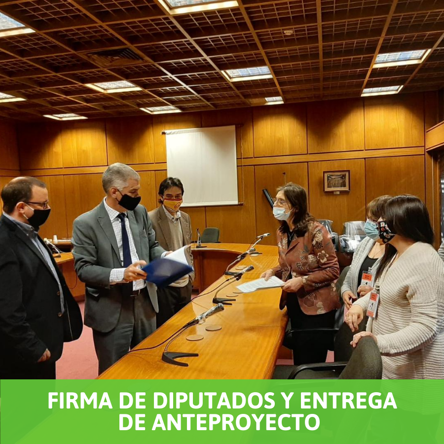 Presentación y entrega de proyecto y firma de Diputados.